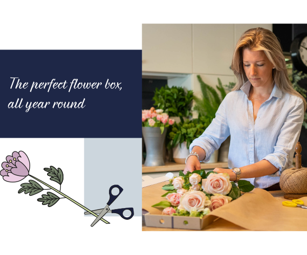 Blooms in a Box seasonal flowers throughout the year via letterbox postal delivery