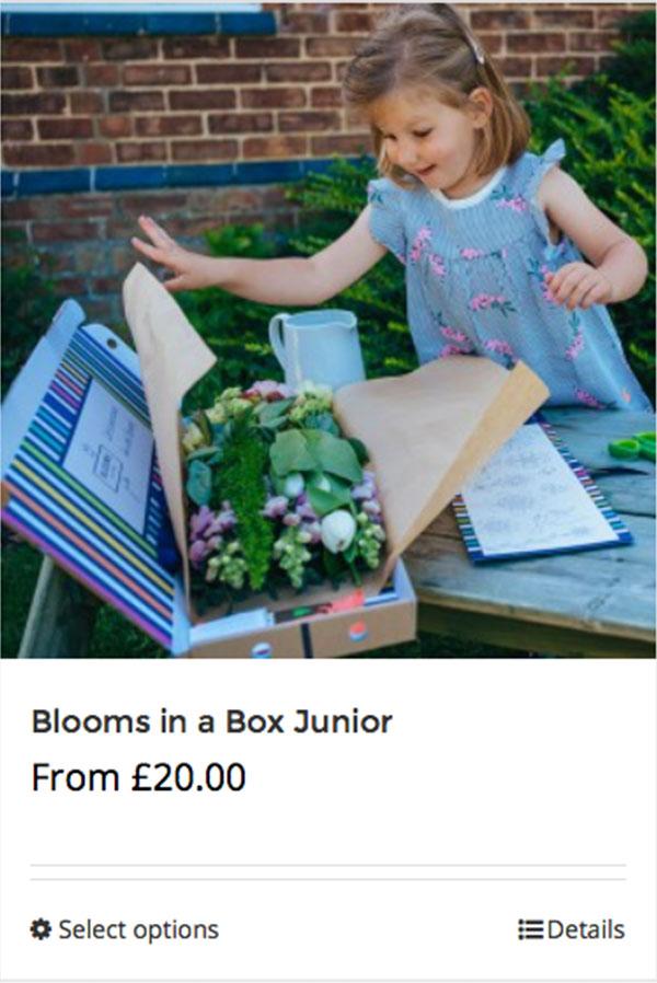 Shop Blooms in a Box Junior